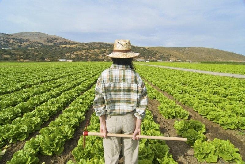 Prestiti agevolati agricoltura